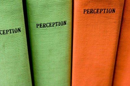 perception books