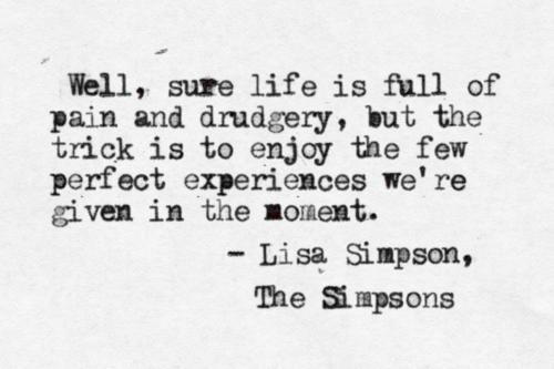 life enjoy the moments simpsons