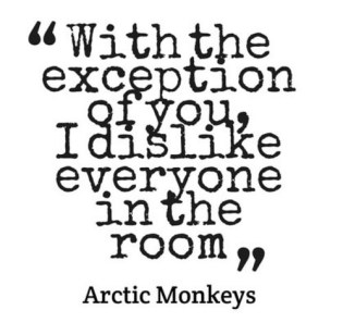 arctic monkey with the exception