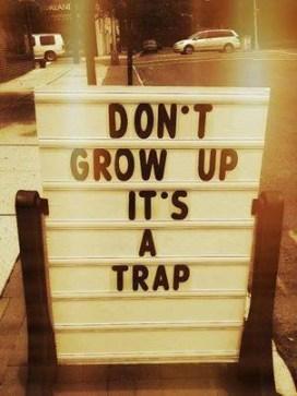 organizational maturity trap