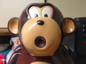 surprise monkey