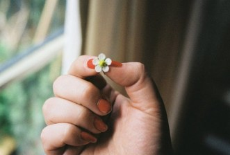 flower small in hand