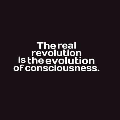 bedlam revolution conscious