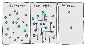 wisdom ability knowledge learning