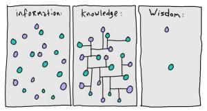 wisdom ability knowledge learning