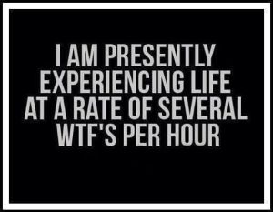 wtf-per-hour-24-7