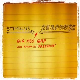 stimulus-response-big-ass-gap-freedom-to-choose
