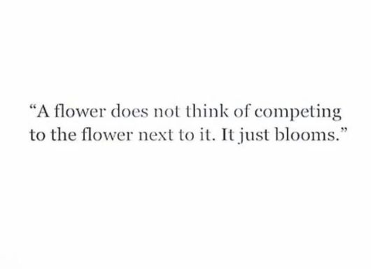 flower does not compete bloom judge