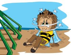 Haley Honey Bee Interior illustration 26