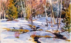 Winter Creek - Ruth Lazier