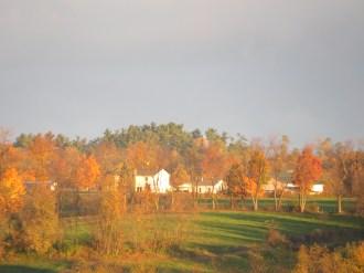 fall leaves, golden leaves, morning sunshine, Amish farmstead, Bruce Stambaugh