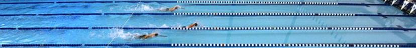 swim-banner