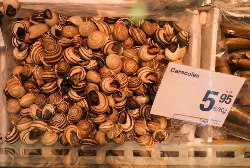 Snails at the Mercado Central in Valencia
