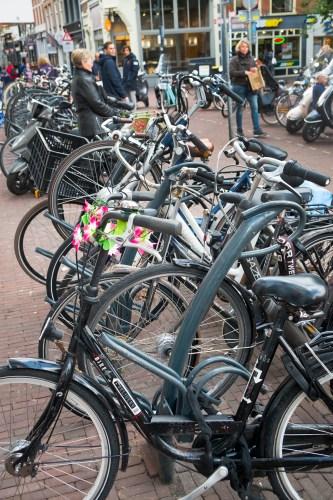 bike19