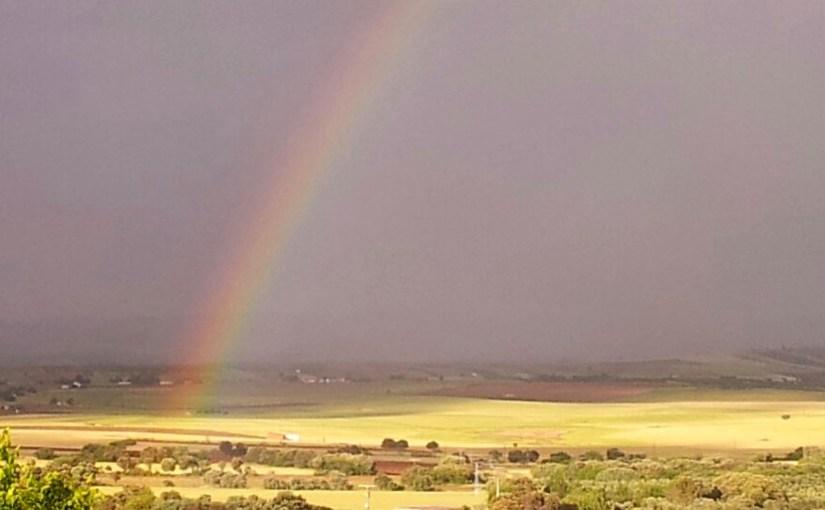 ¿Cuántos colores tiene el arco iris?