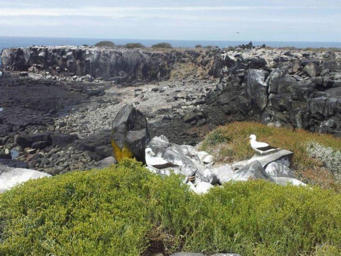 unbewohnte Insel auf Galapgos