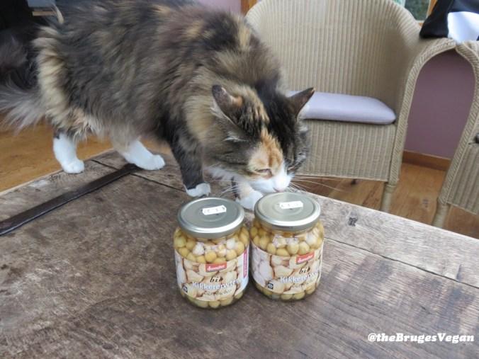 kikkererwten in bokaal, met kat!