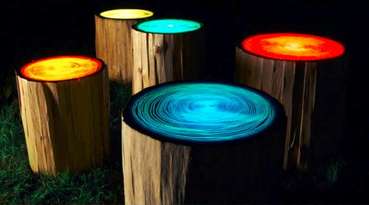 Lichtgevende boomstammen