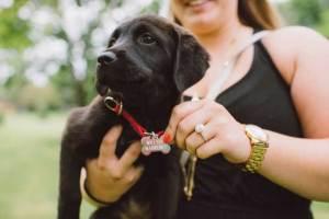 Een man ten huwelijk vragen met je hond