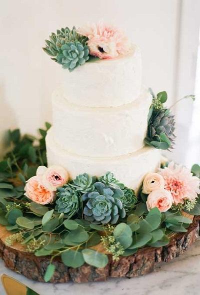 Bruidstaart met vetplantjes