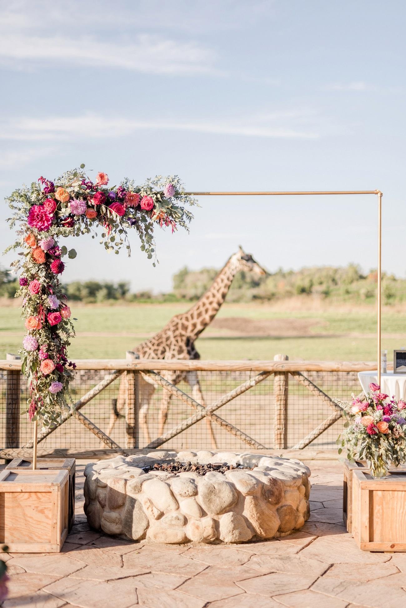 Giraffe op trouwlocatie