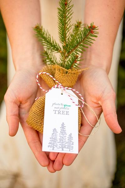 Mini kerstboompje als gastenbedankje