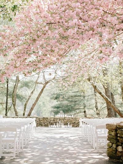 Ceremonie onder bloesem bomen