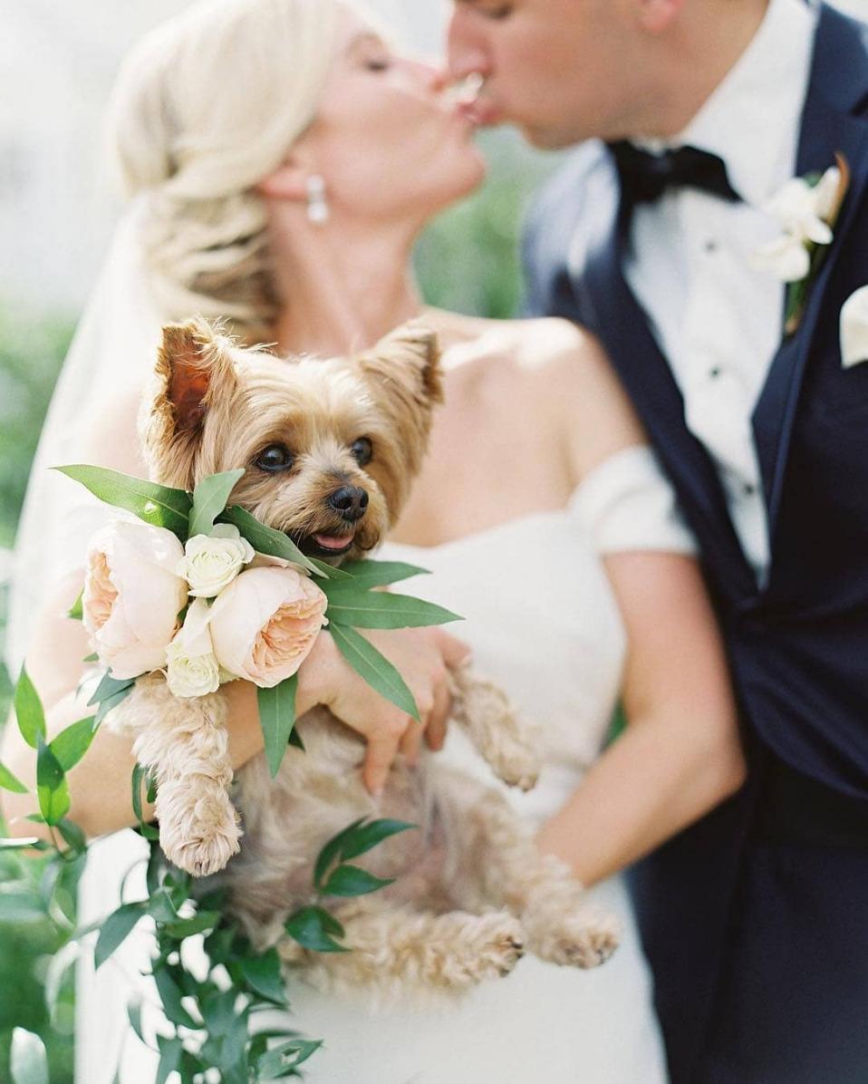 Bruidspaar met hondje