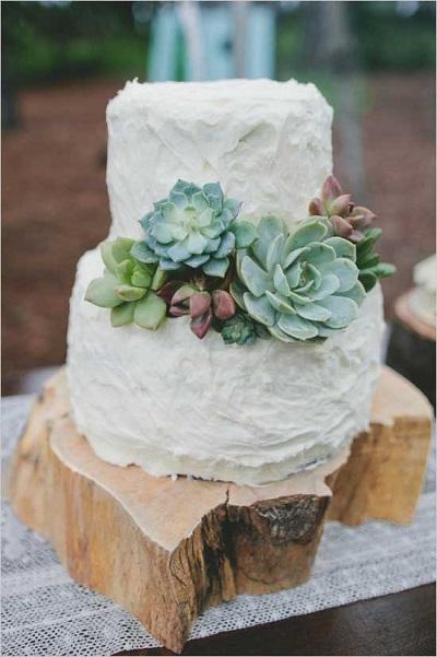 Vetplantjes op bruidstaart