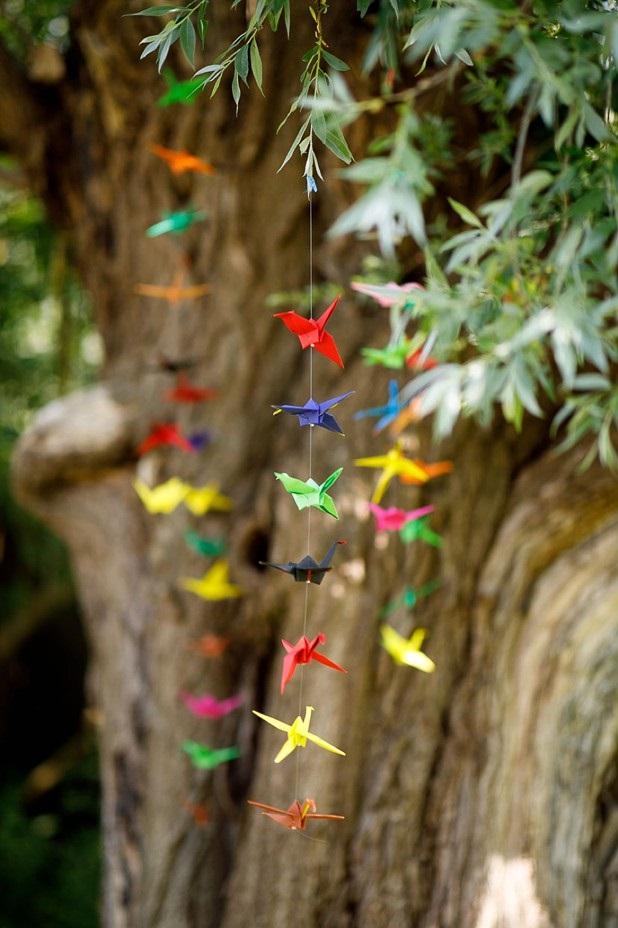 Gekleurde kraanvogels aan boom