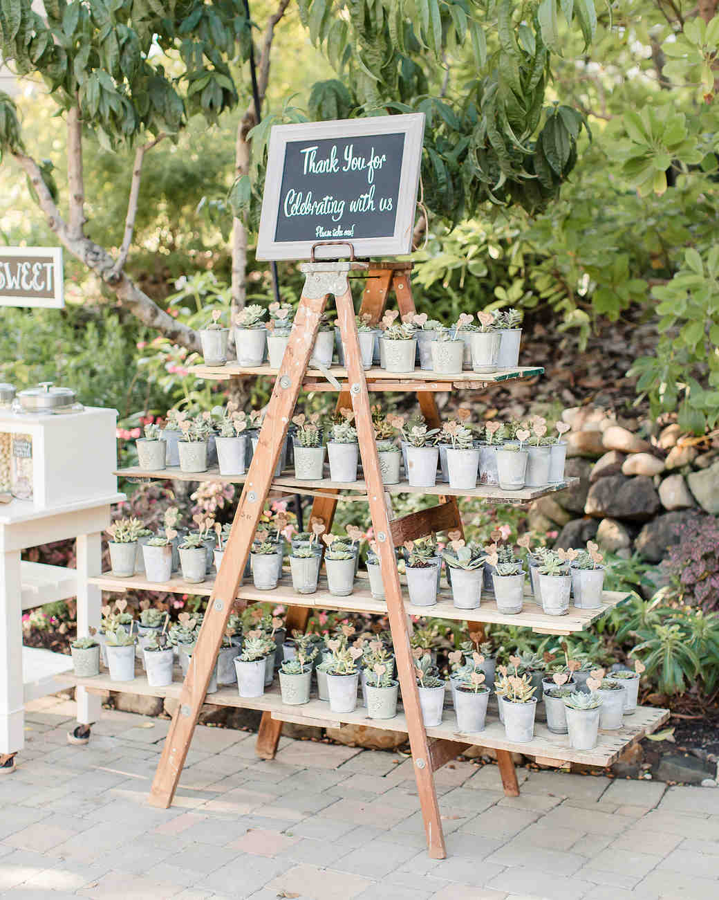Plantjes als gastenbedankje