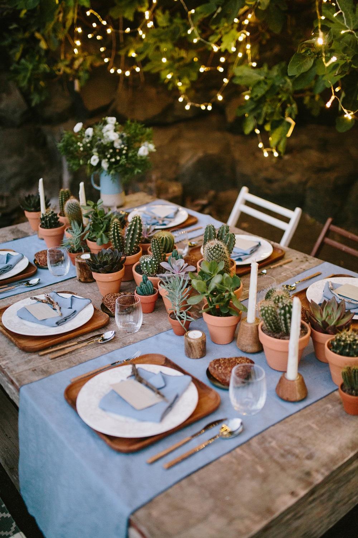 Cactussen op tafel voor het diner
