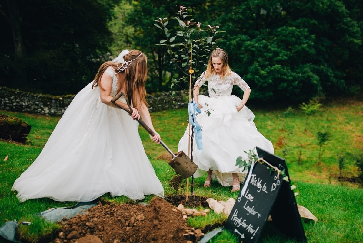Bruid is een boom aan het planten voor haar huwelijk