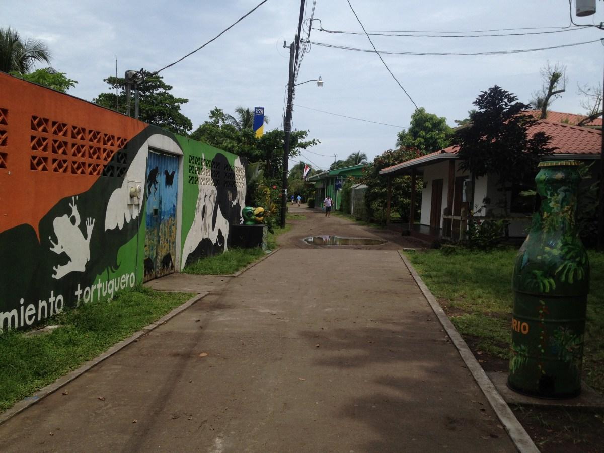 Tortuguero National Park, Costa Rica: Photo Gallery