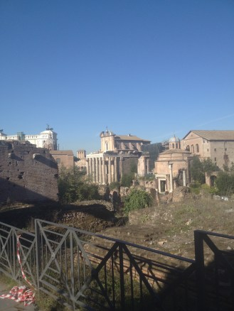 We went back to the forum the next morning, on our last day in Rome.