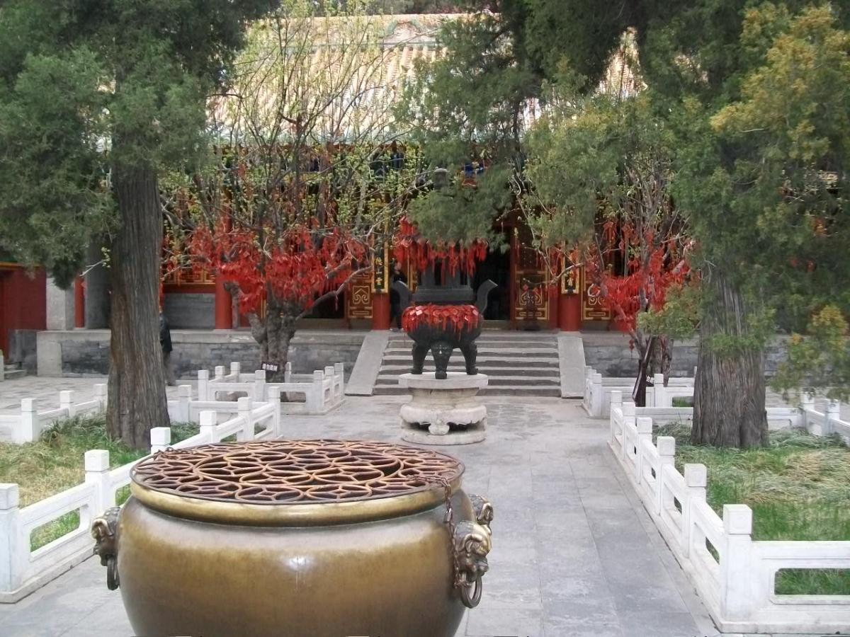 Things to Do in Beijing: John Makes Potato Soup for Vegetarian Restaurant, Beijing, China