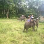 Riding Elephants at Chitwan National Park