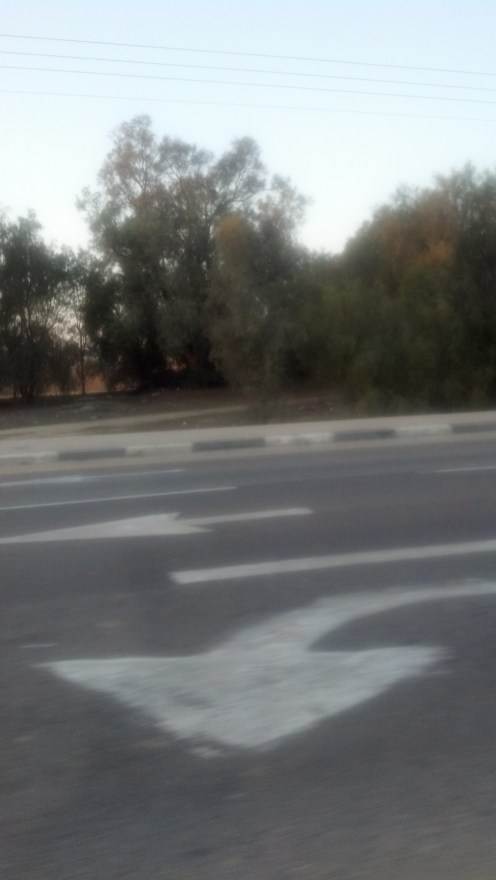 Israel Gaza Strip Driving in Israel