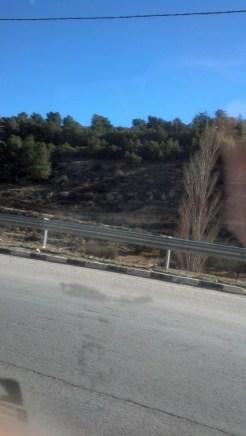 The landscape around Wadi Musa.