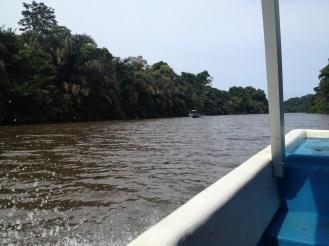 Leaving Tortuguero.