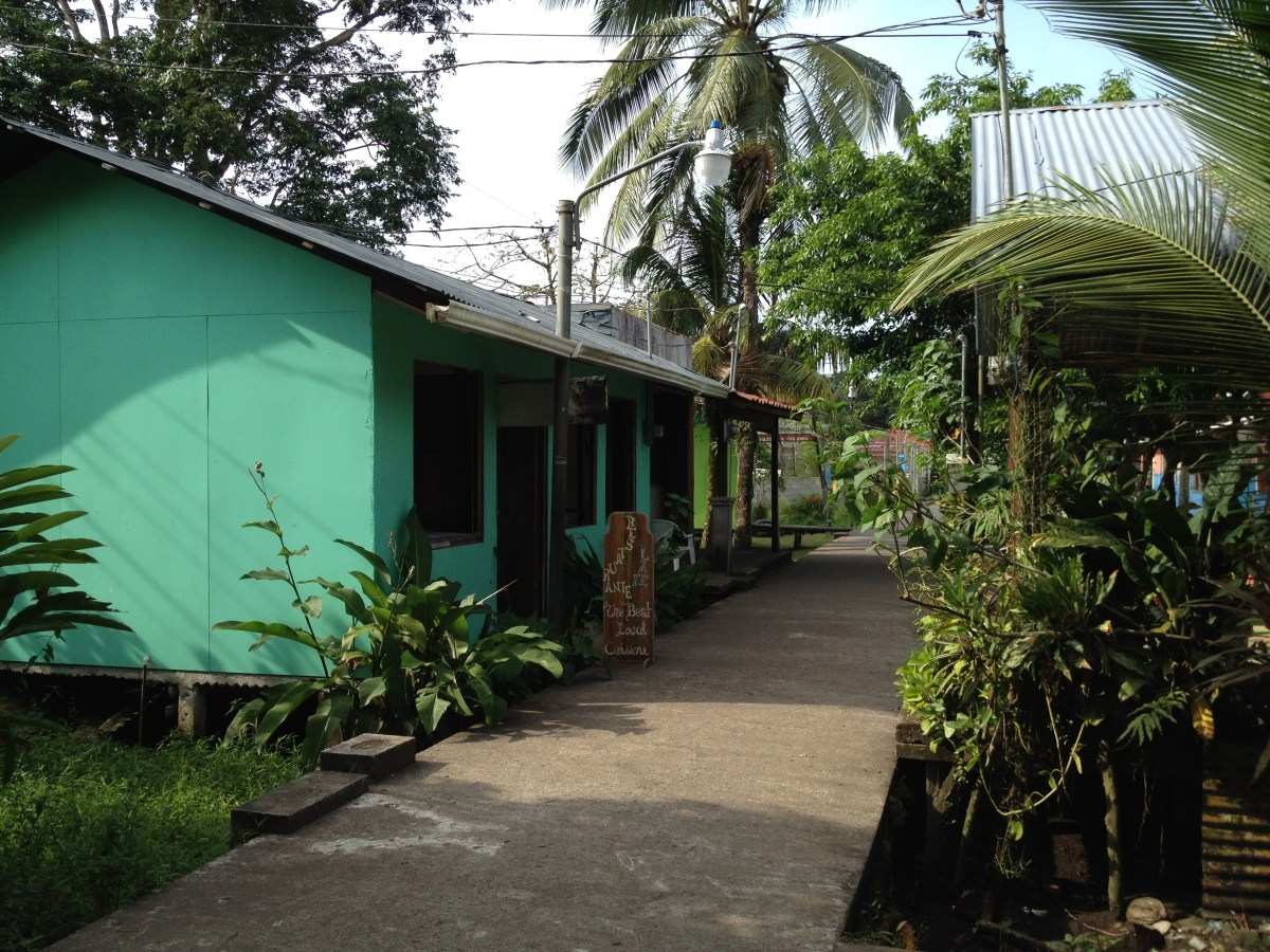 Tortuguero National Park- Part II (Being There) — By Jennifer Shipp