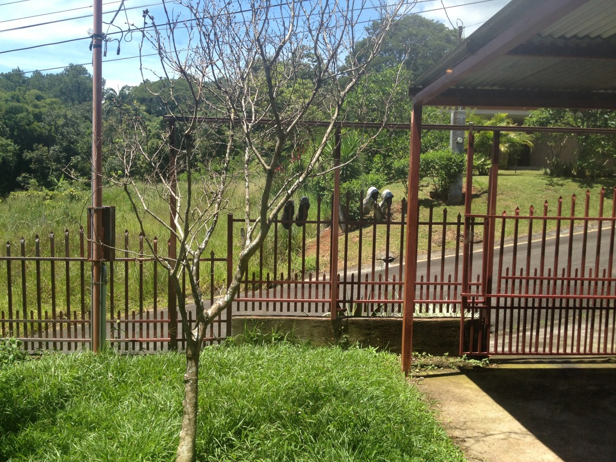 Fred, the Expat Costa Rican Landlord — By Jennifer Shipp