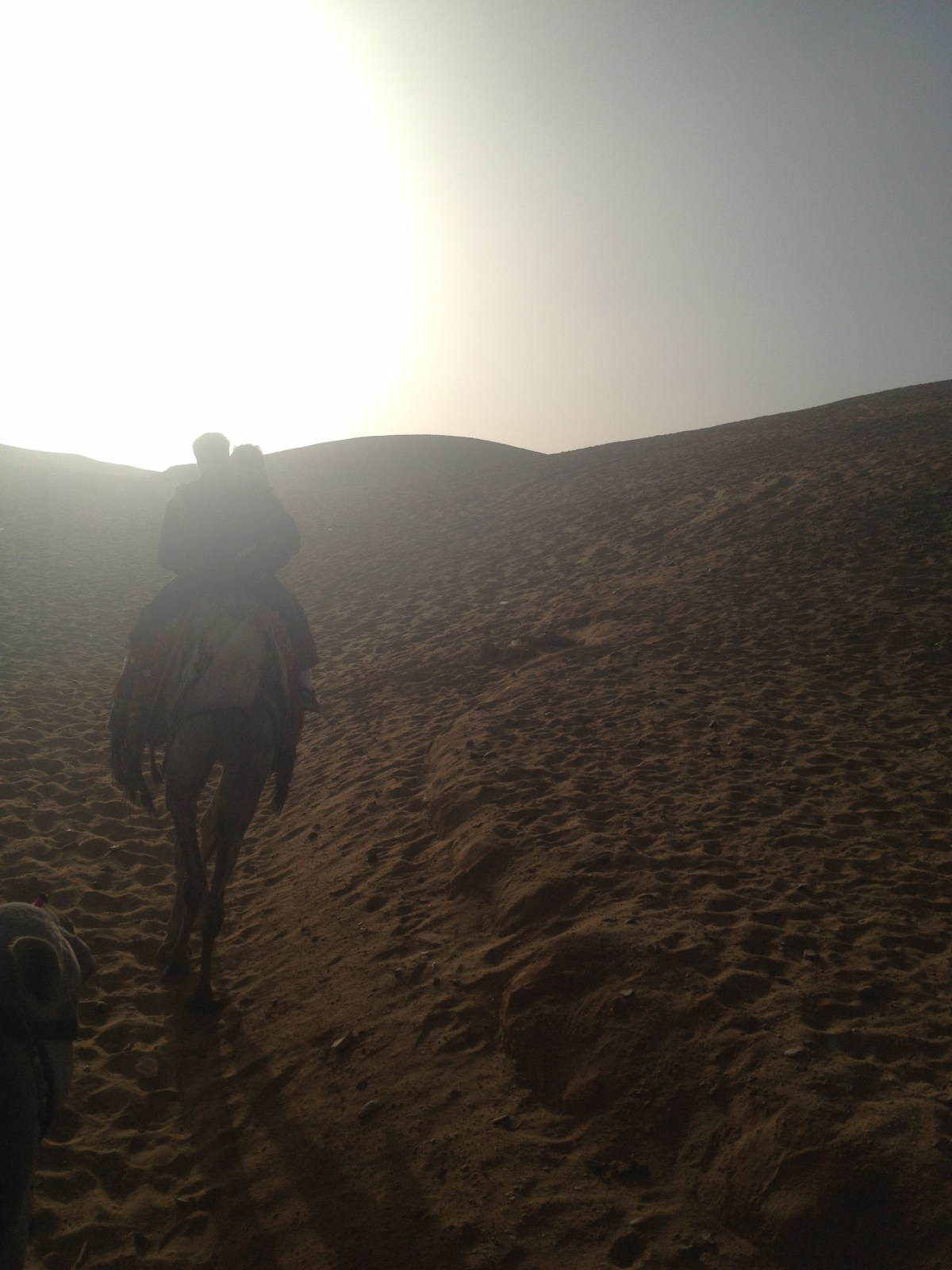 Egypt Tourism: In the Desert after the Camel Ride