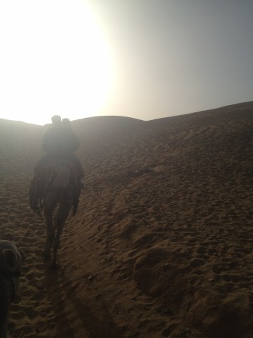 Camel ride through the desert near Cairo.