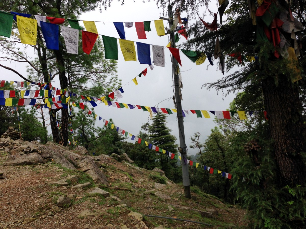 Mcleodganj: Highlights from the Hike Toward Dharamkot