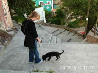 Guanajuato Stairs Dogs Mexico