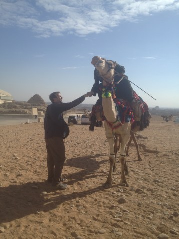 Cairo Egypt John Pyramids Camels