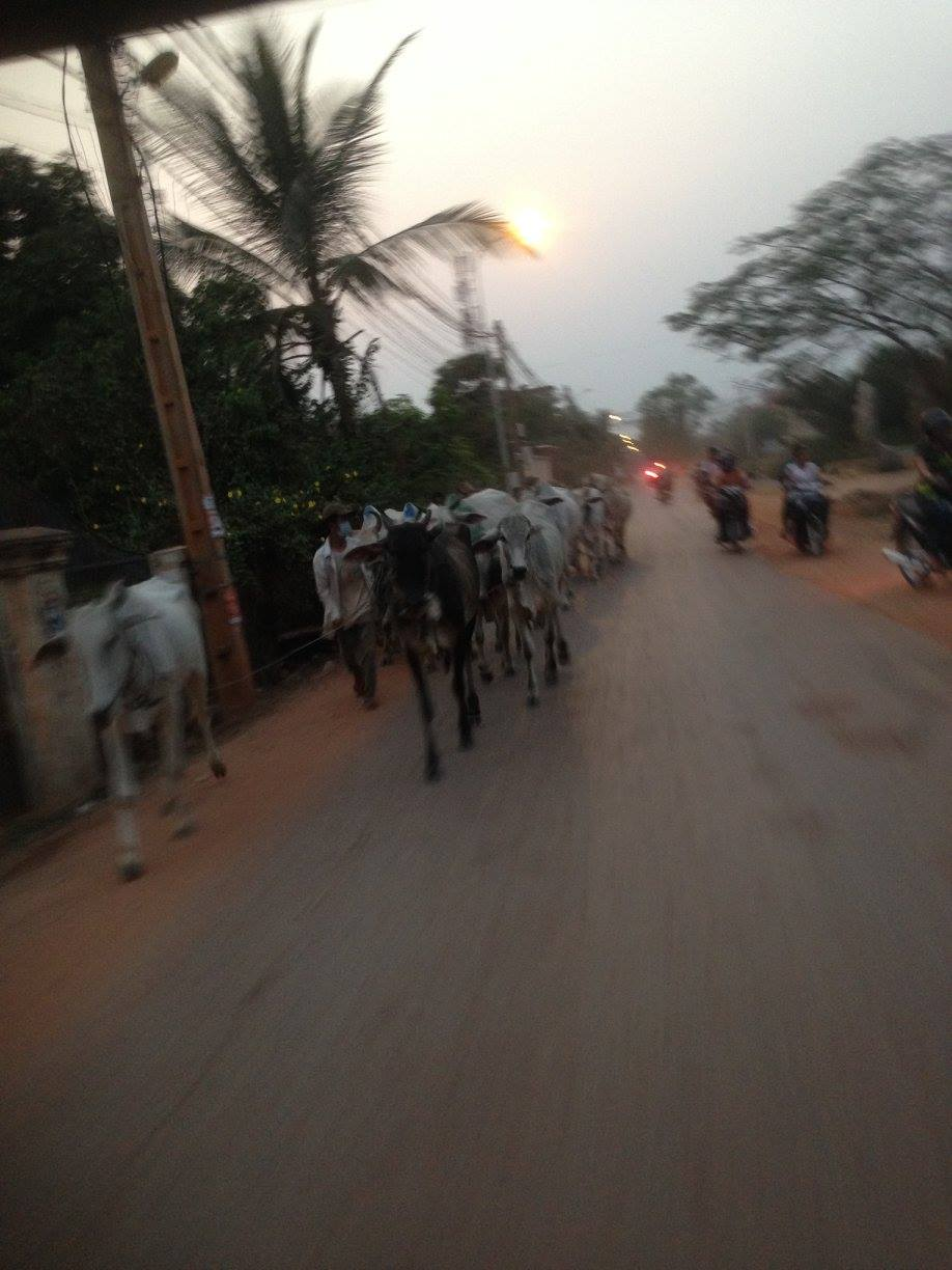 Tourism in Cambodia: Tuk Tuk Ride to the School for the Blind in Siem Reap — By Jennifer Shipp