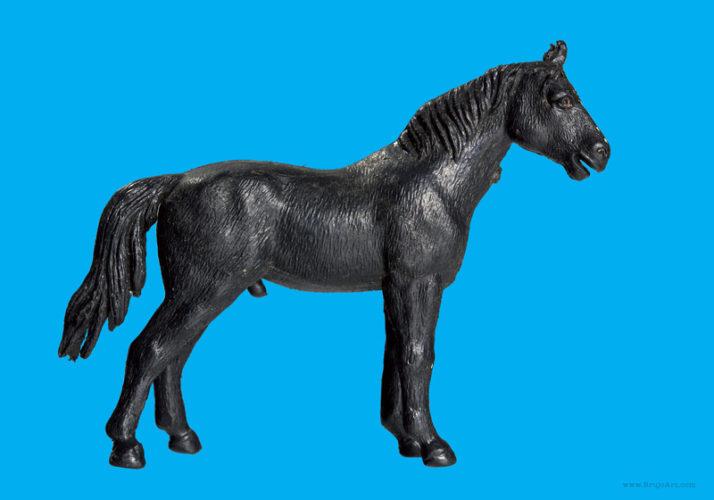 Plastic Fantastic: Horse