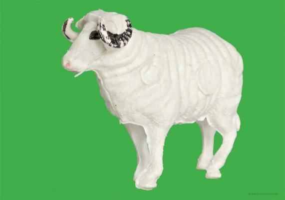 Plastic Fantastic: Sheep